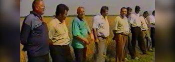 Miresu Mare-ARHIVA-Loturi experimentale la grau-anul 2001-Foto