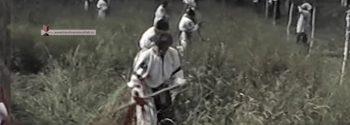 Mesteacan 1997-Concurs de cosit iarba la femei
